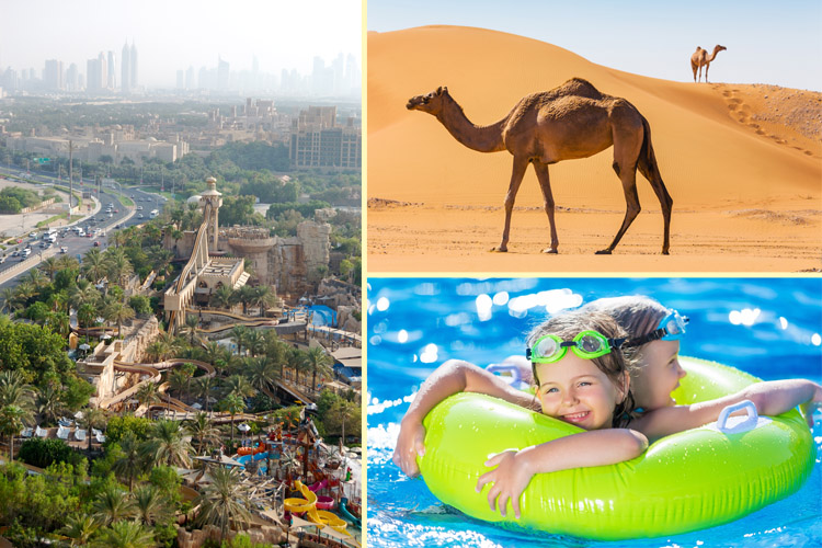 Collage of waterpark, camels and kids in a pool