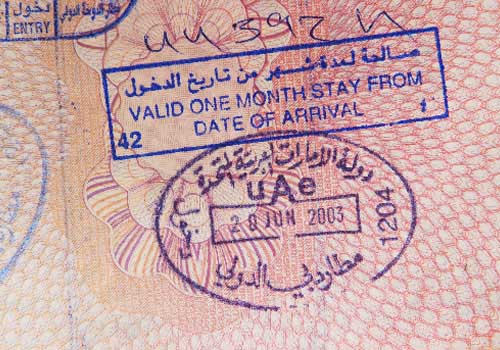 Picture of a visa from a passport with pink pages